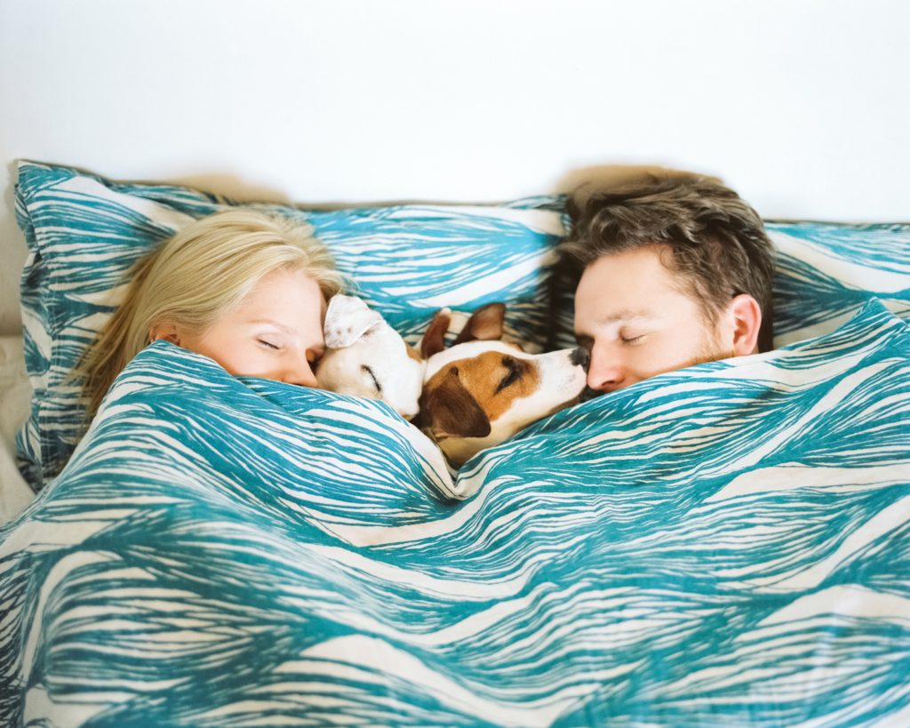 vacation rental allow pets increase profits couple dogs